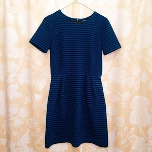 Madewell Gallerist Ponte Dress in Stripe